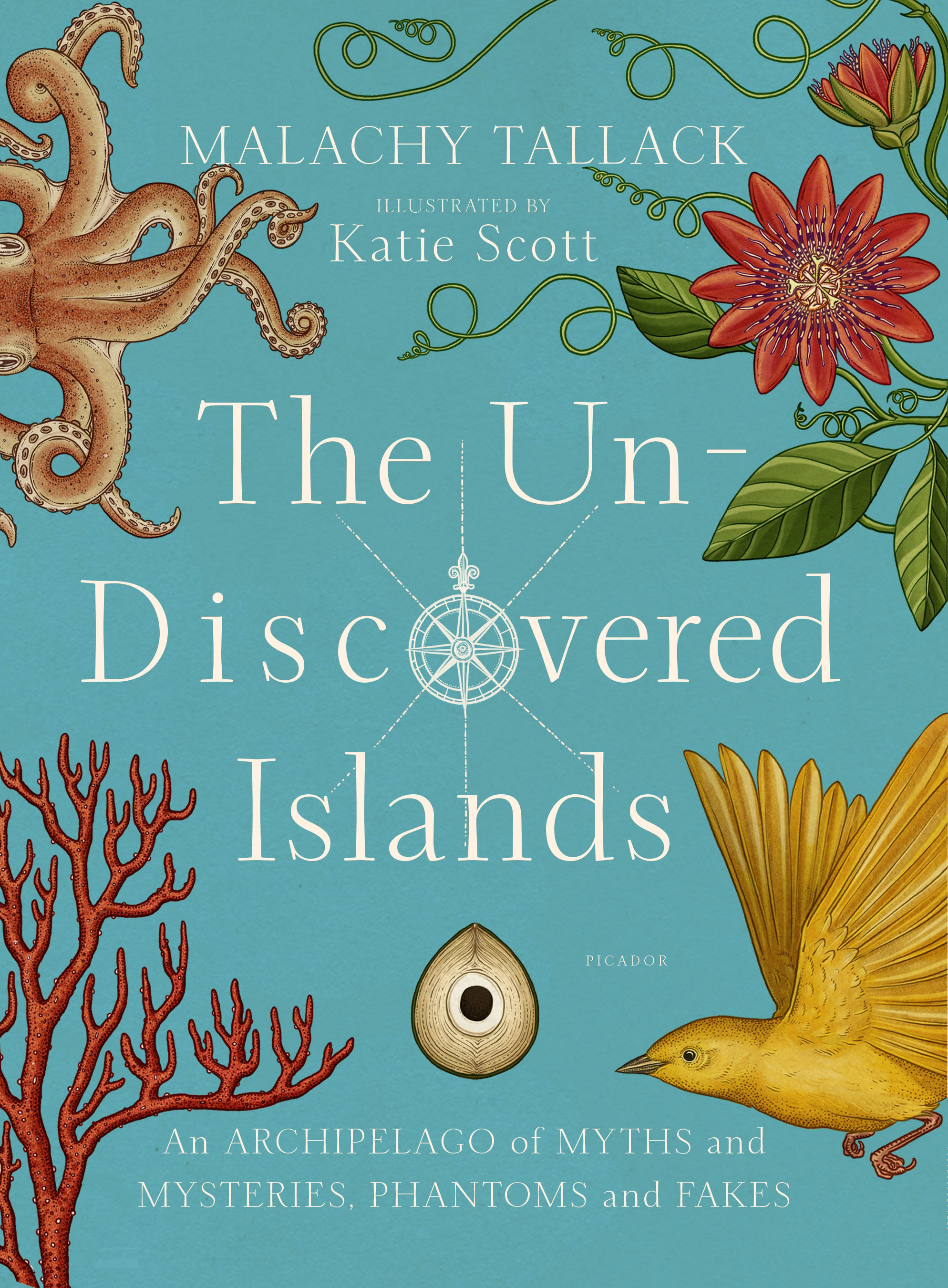 Interview With Sveta Dorosheva Author Of The Land Stone Flowers Un Diagrama Frontal Y Lateral Del Motor Bxer Beetle Discovered Islands By Malachy Tallack Illustrated Katie Scott Be Prepared To Captivated Astounding Tales Two Dozen Once