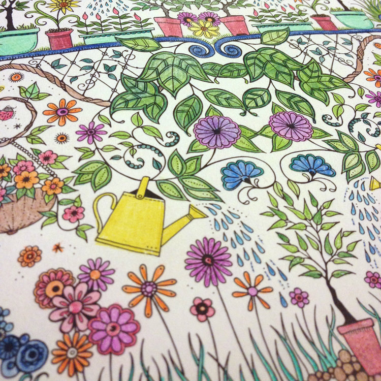 Secret Garden Colouring Book Finished Image Collections Book