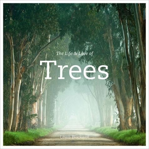 life-love-trees.jpg